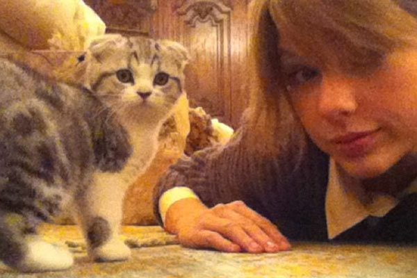 taylor swift meredith grey 40 milliom